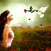 9 câu nói hay về tình yêu – tiếng Anh