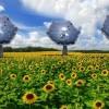 Sunflower – Hệ thống cung cấp điện và nước sạch