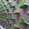 Kiệt tác từ vỏ chai nhựa