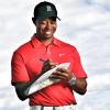 Tiger Woods nhận hợp đồng thiết kế sân golf tại Dubai