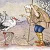 Ngụ ngôn – Bác nông dân & con cò