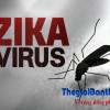 Cách phòng tránh nhiễm virus Zika