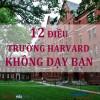 12 điều trường Harvard không dạy bạn