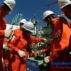 Đối phó với giá dầu thấp: Kinh nghiệm của Petronas và Petrobras
