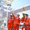 Chuẩn bị hạ tầng để nhập LNG cho các dự án điện