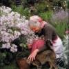 Cuộc đời an yên bên nhà vườn rực rỡ như cổ tích của cụ bà 92 tuổi
