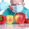 10 thực phẩm gây ung thư cao kinh hoàng, PHẢI BIẾT để tránh mắc bệnh trước tuổi 30