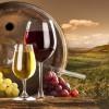 Tìm hiểu những kiến thức cơ bản về rượu vang