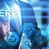 Công ty tư vấn triển khai ERP tại Việt Nam