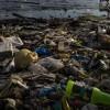 Khủng hoảng rác lan rộng toàn cầu sau lệnh cấm của Trung Quốc