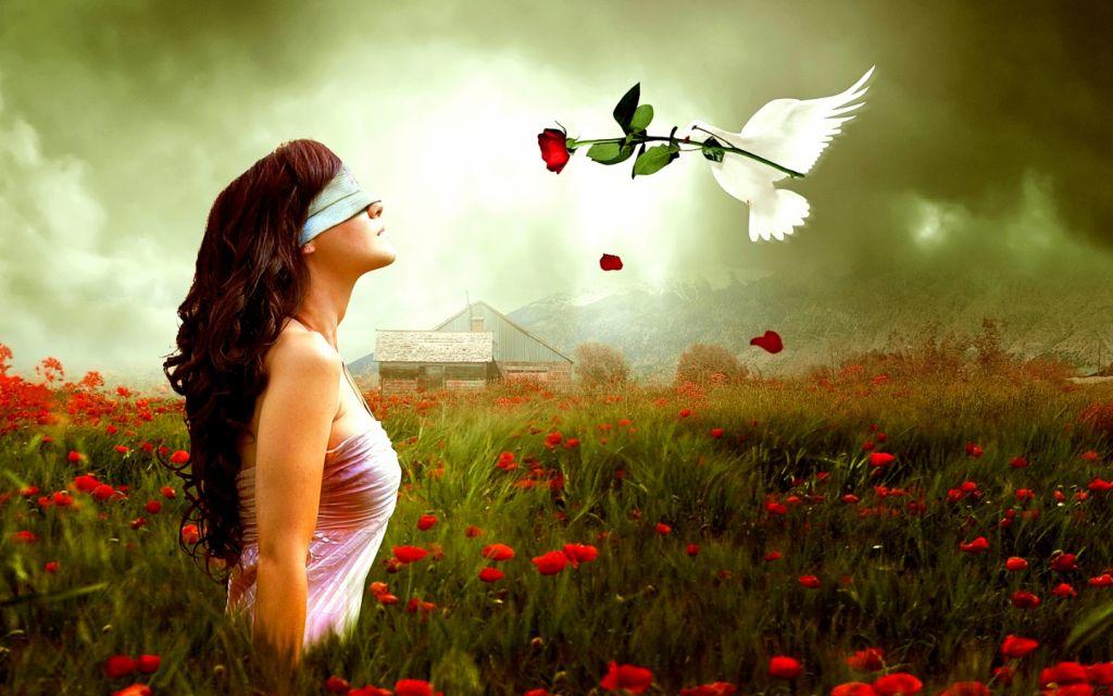 Love-love-31617012-1440-900