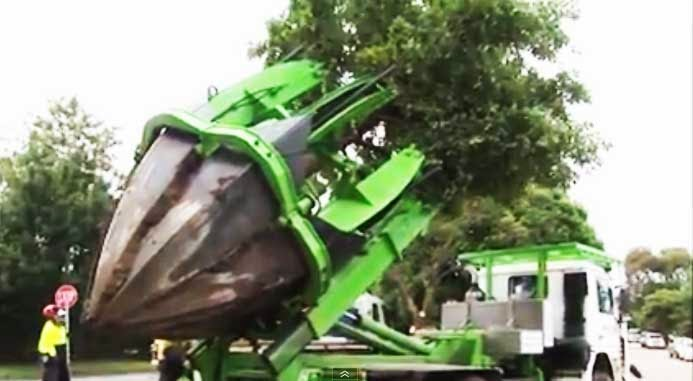 Tree-relocation-mechine