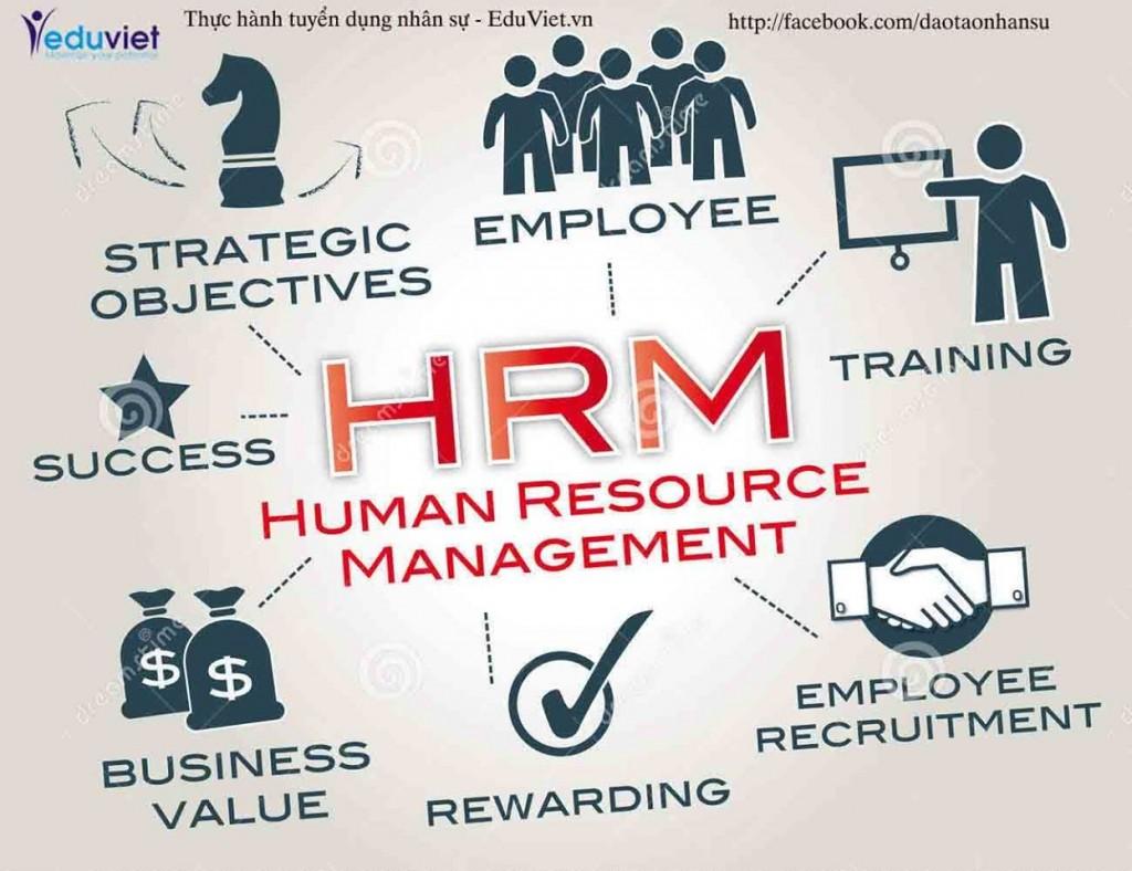 HR AnhViet