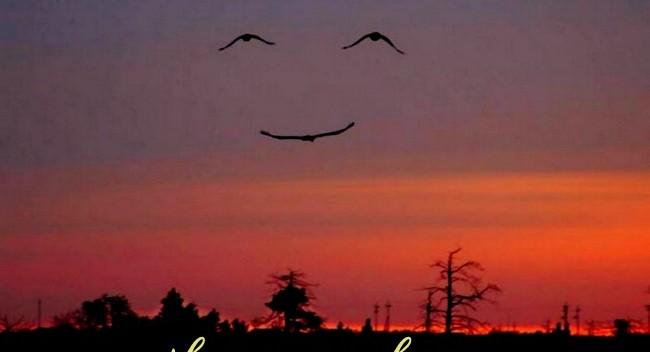 5 câu chuyện ngắn giúp ta luôn mỉm cười