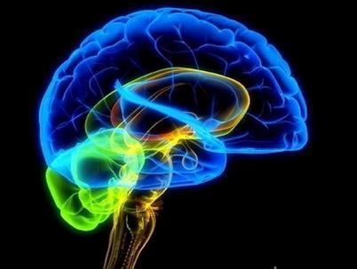 Nghe nhạc BAROQUE giúp bộ não hoạt động tốt hơn, nào cùng trải nghiệm nào !