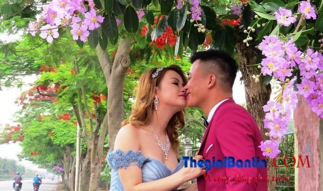 Hoa phuong do Haiphong (9)