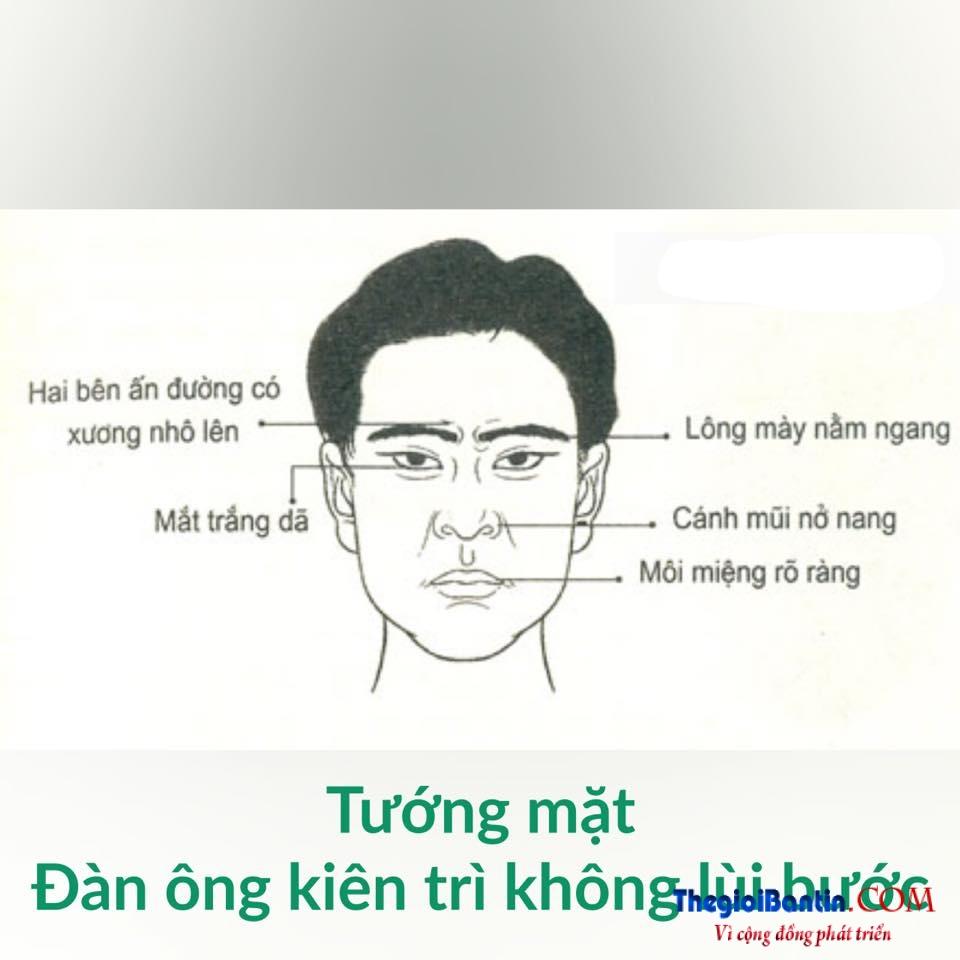 Nhan tuong hoc nhin mat Dan ong doan nguoi (10)