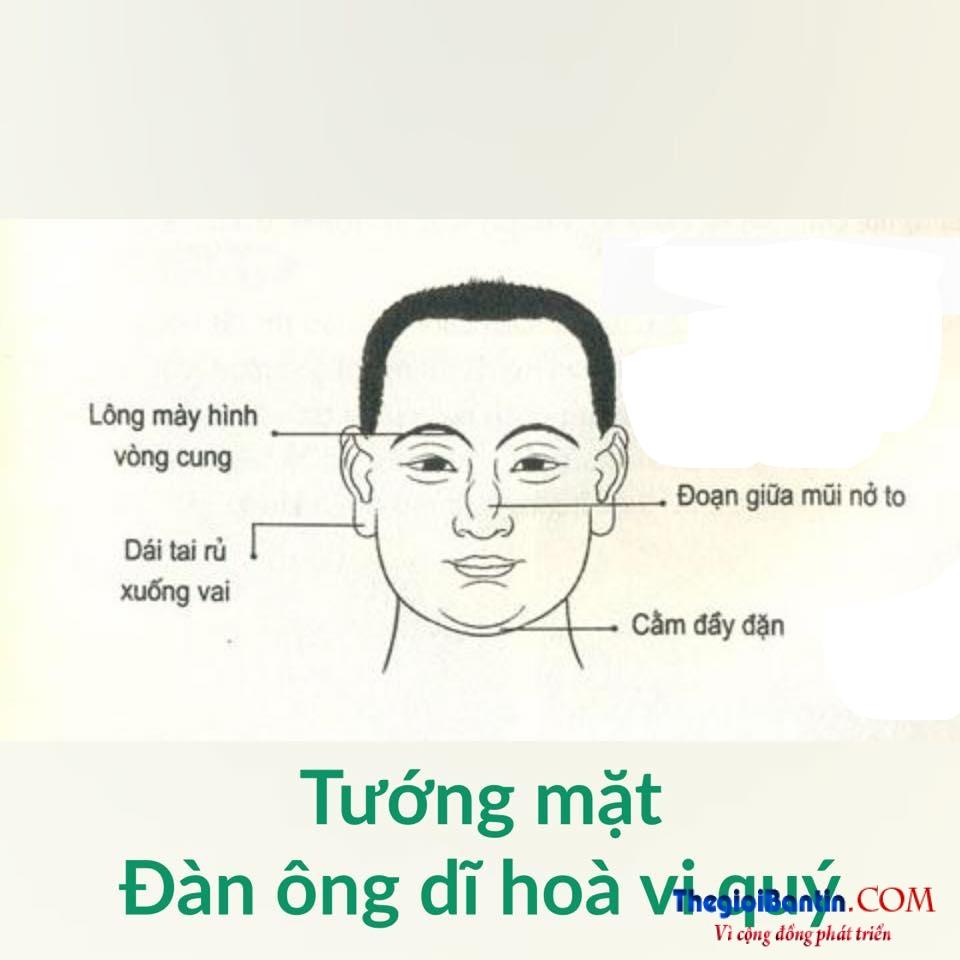 Nhan tuong hoc nhin mat Dan ong doan nguoi (11)