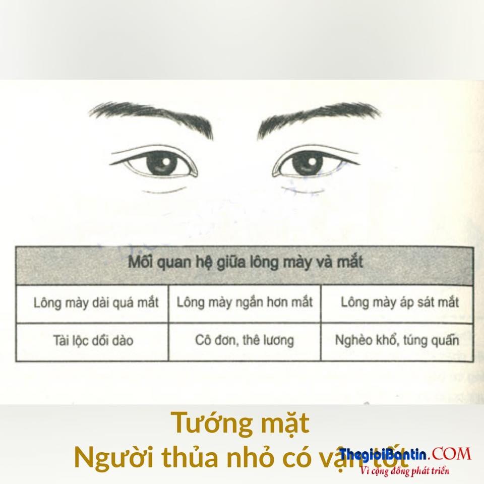 Nhan tuong hoc nhin mat Dan ong doan nguoi (5)