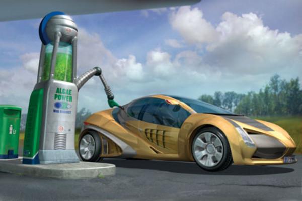 nhiên liệu