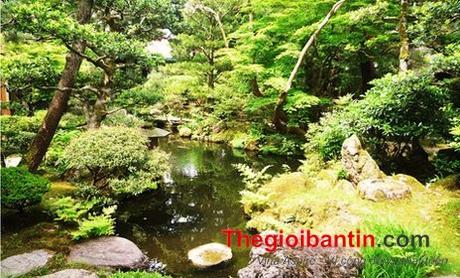 khach-san-1367043261_500x0