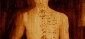Khoa học cuối cùng cũng chứng minh được sự tồn tại của kinh mạch?