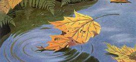 Nỗi nhớ mùa thu