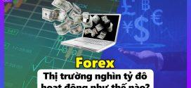 Forex – Thị Trường Nghìn Tỷ Đô Hoạt Động Như Thế Nào?