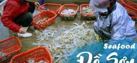 Không thể ngừng tiêu tiền vì hải sản Ngon Bổ Rẻ ở cảng cá Đồ Sơn