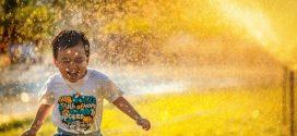 Người minh triết chủ động kích thích hạnh phúc: 5 thói quen đơn giản, hiệu quả đúc kết từ hàng triệu người